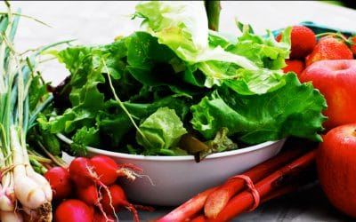 Higiene e Segurança Alimentar – Educação para a Saúde