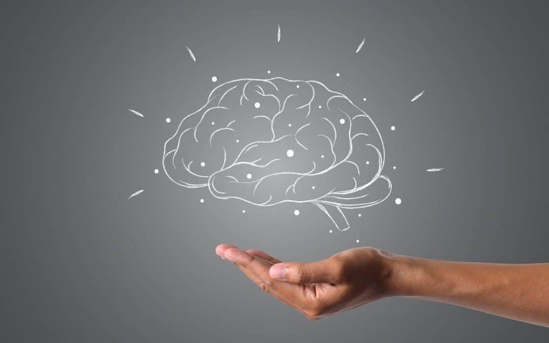 Iniciação à Programação Neuro Linguística Integrativa
